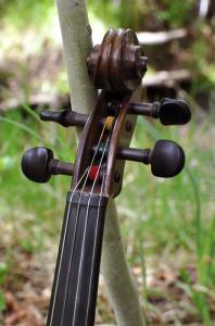 fiddle-006-0042