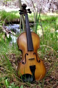fiddle-006-0043