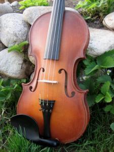 fiddle-03-1381