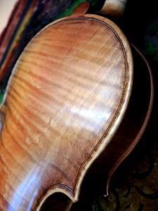 fiddle-19-24