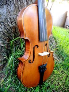 fiddle-np-01-20