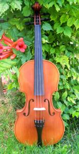fiddle-np-02-59