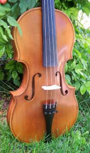fiddle-np-02-60