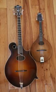 mandocello-14