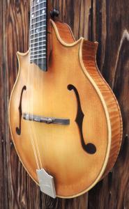 mandolin-2point-v-229-20