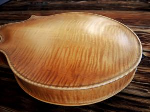 mandolin-2point-v-229-29