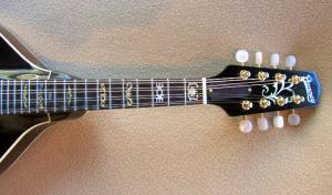 mandolin-a2-170-499