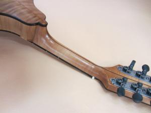 mandolin-a2-194-389