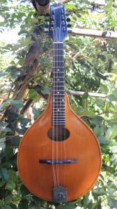 mandolin-a2-213-464