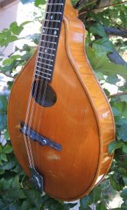 mandolin-a2-213-472