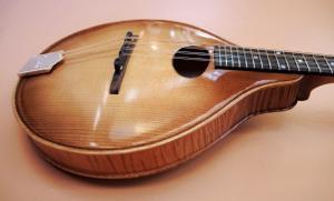 mandolin-a2-216-72