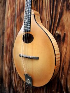 mandolin-a2-220-25