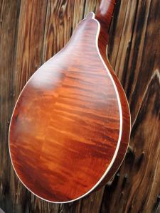 mandolin-a2-221-50