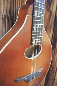 mandolin-a2-222-478
