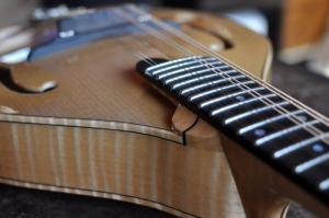 mandolin-a5-0036