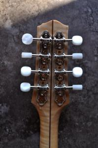 mandolin-a5-0056