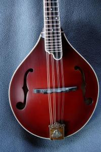 mandolin-a5-05617