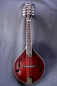 mandolin-a5-05625