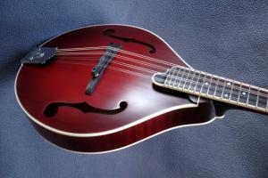 mandolin-a5-05639