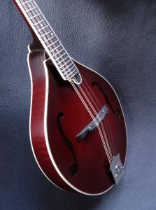 mandolin-a5-05640