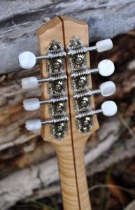 mandolin-a5-146-032