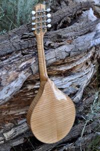mandolin-a5-146-049