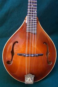 mandolin-a5-7302