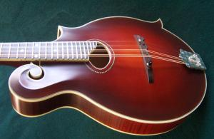 mandolin-f4-5349